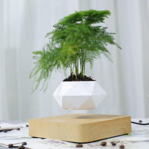 Mini-Jardin Deluxe